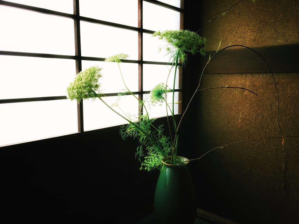 Ikebana by Window Light