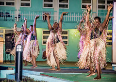 sports(0.0), team sport(0.0), event(1.0), performing arts(1.0), musical theatre(1.0), entertainment(1.0), dance(1.0), hula(1.0), performance art(1.0),