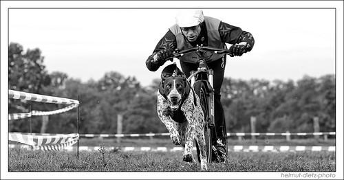 Dogscooter Alain Hercher, im Tierpark Ströhen