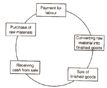 CBSE Class 12 Business Studies Notes : Financial Management