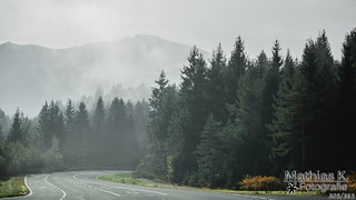 Nebel | Projekt 365 | Tag 305