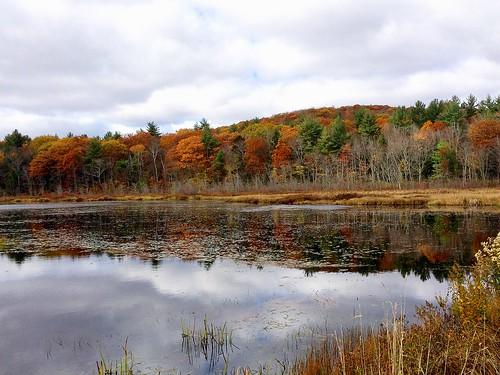 autumn lake water pond fallcolors newhampshire foliage monadnock