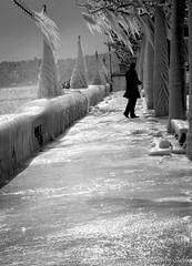 Les quais de Versoix sous le gel.