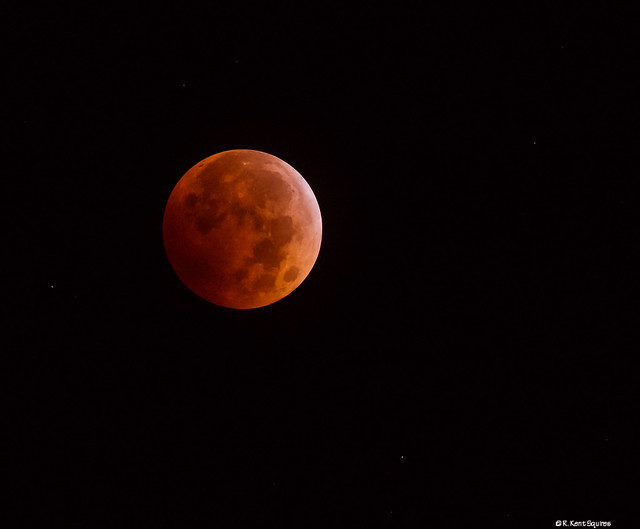 Blood Moon - Lunar Eclipse10082014-0328