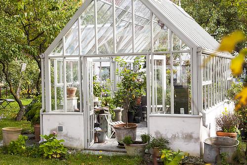 Verdus greenhouse