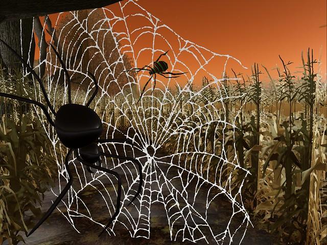 Bontanica - Spun Web of Tales