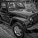 mono jeep