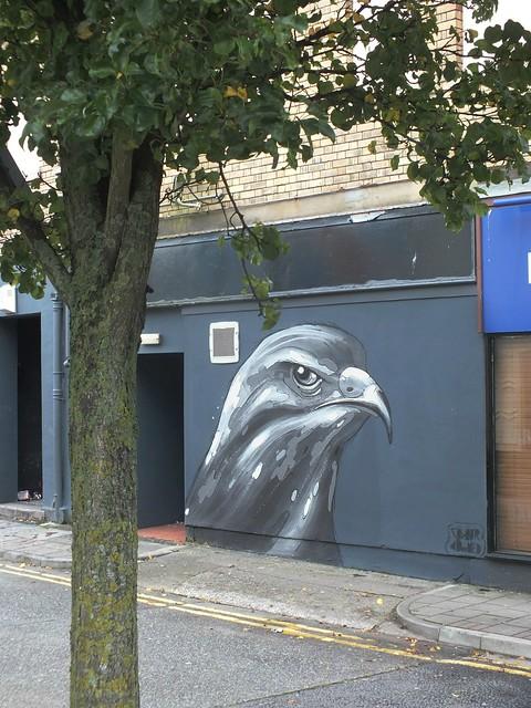 Empty Walls 2014: Colour Doomed buzzard