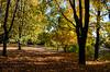Autumn, Toamna
