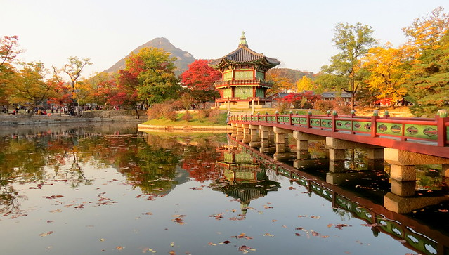Autumn Reflections (seoul, Korea)