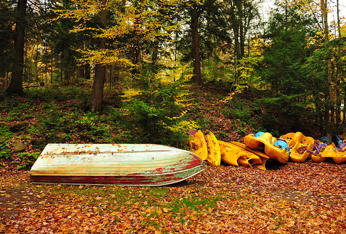 autumn ontario fall leaves rain boat maple peace cottage canoe foliage zen muskoka moisture highfalls cottagelife