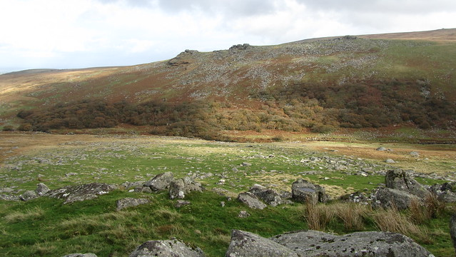 Black Tor and Black-a-tor Copse
