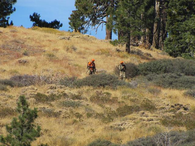 Pine Mountain Ridge