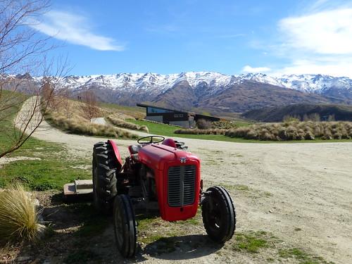tractors ferguson massey redistherule