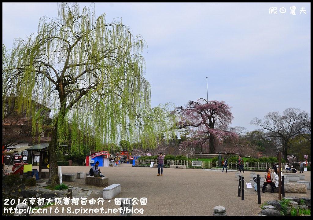 2014京都大阪賞櫻自由行.圓山公園DSC_9979