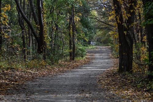 nature flickr indiana lane elkhart preserve bootlake bootlakenaturepreserve msh1014 msh10149