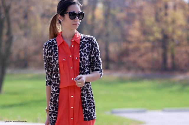 Ann Taylor leopard cardigan