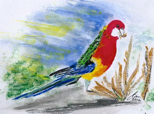 Week 43 Bird III