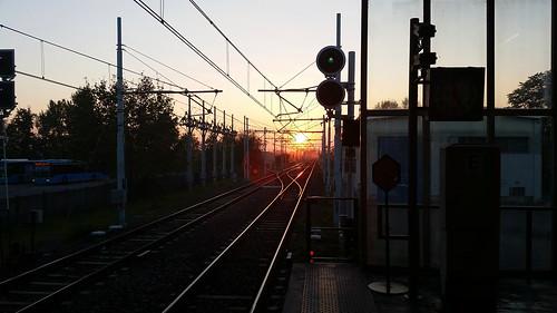 sunset urban milan silhouette phone samsung