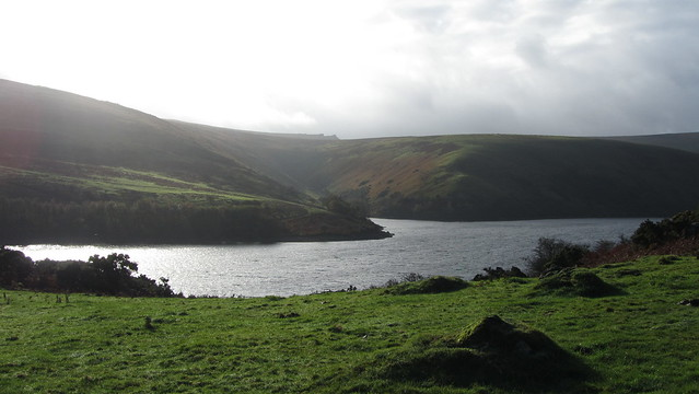 Meldon Reservoir from South Down