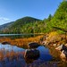 Acadia by Greg from Maine