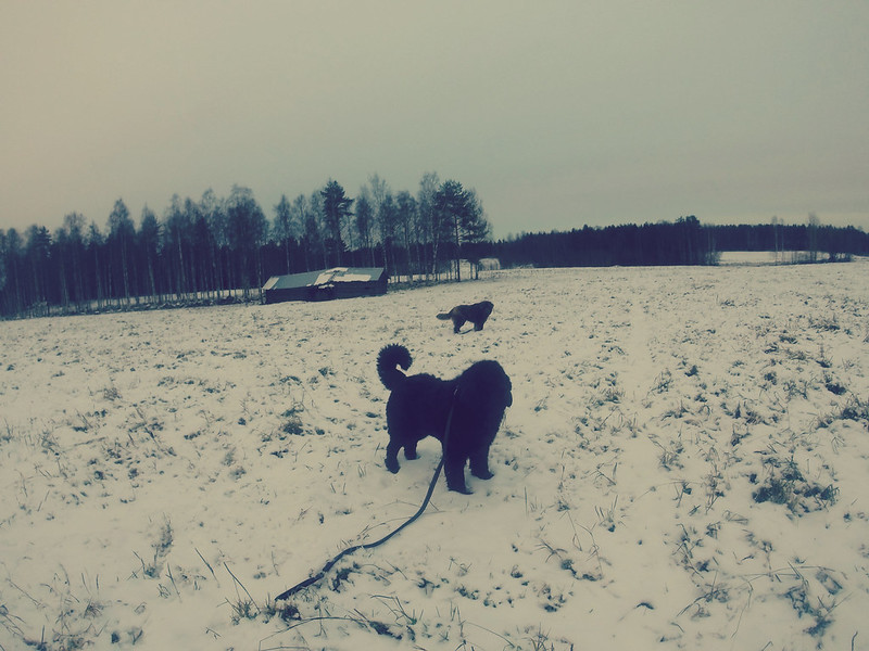 GOPR9401_Fotor