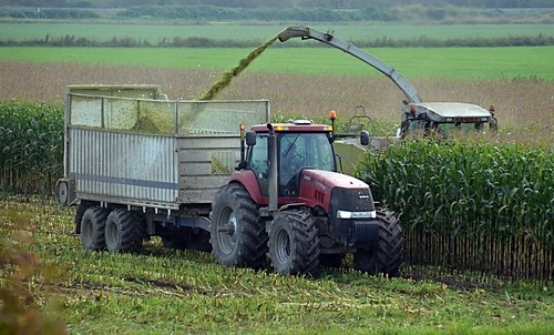 canada britishcolumbia farming abbotsford cornharvest nikond7000 nikkor18to200mmvrlens