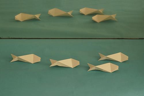 Mirror-fish (Herman van Goubergen)