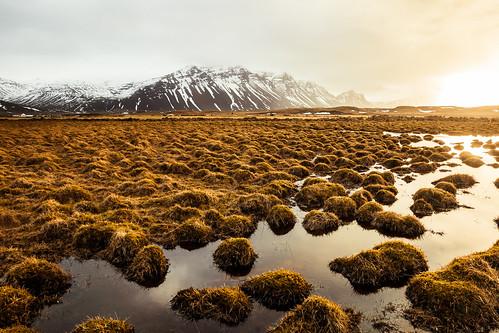 is islande iceland islanda islandia höfn east coast south sunrise morning landscape paysage matin lever de soleil austurland