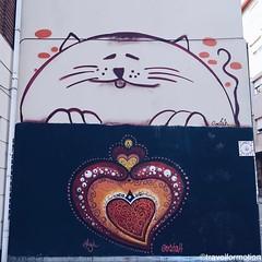 #streetart #art #porto #oporto #porto_ig #visitporto #portugal #loves_porto #portolovers #wanderlust #travel #travelgram #vsco #vscocam #guardiantravelsnaps #guardiancities #citytrip #travelphotography #igers_porto #visitportoandnorth #ig_travel #igersopo