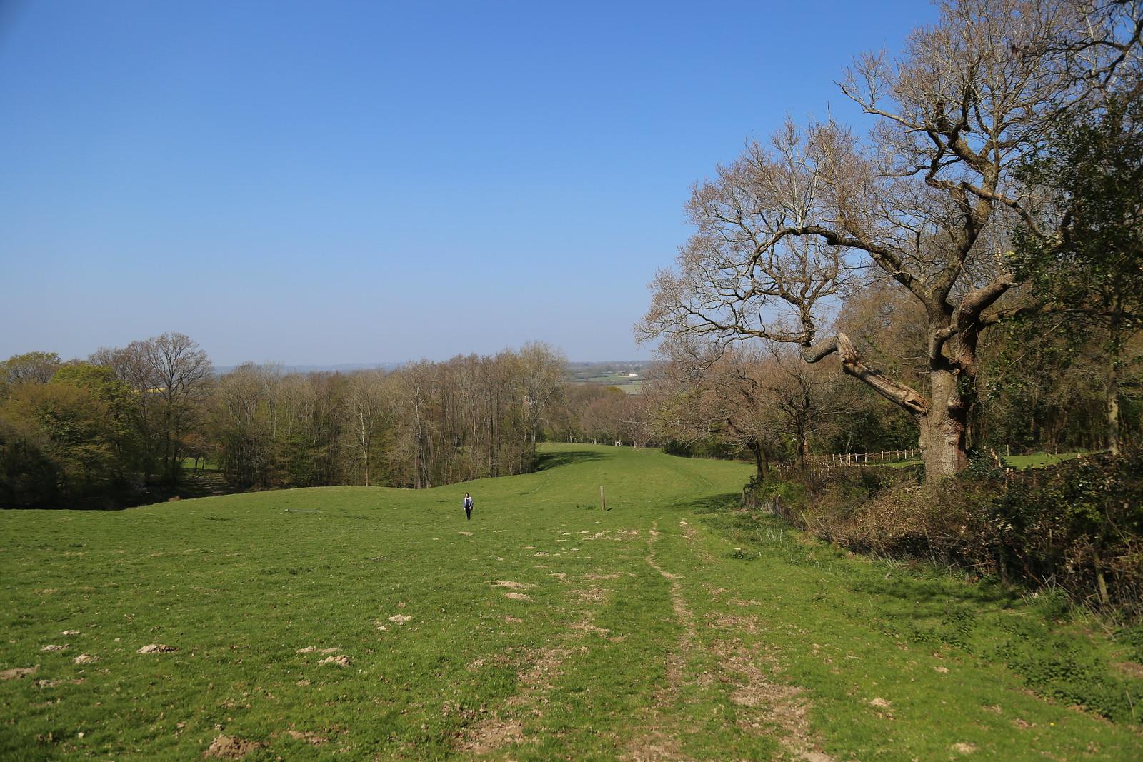 A Walk uphill
