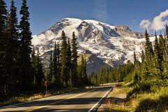 Road To Mt Rainier