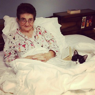 #Mom + my #Normie cutie pie #catsofinstagram #kitty #cat