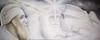 Burebista lupul dacic Zamolxis si sfinxul din Bucegi pictura