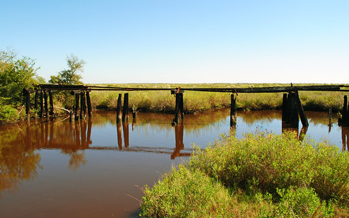 county railroad trestle bridge abandoned train way pacific timber railway right row missouri mopac stringer brazoria