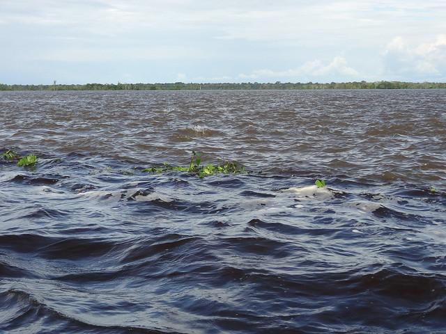 Encuentro de las aguas