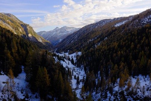 schnee autumn snow alps herbst carinthia valley fujifilm alpen larch tal lärche wclx100 x100s
