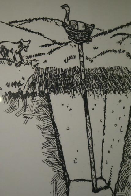 Braconnage : Méthode pour attraper un loup avec une oie.