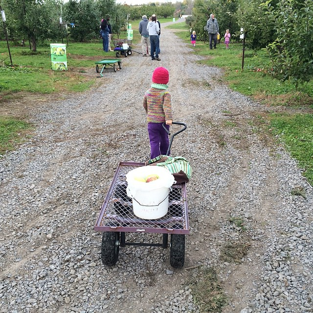 Taking the wagon to meet her friends.