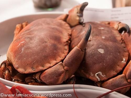 Meeresfrüchtekurs 2014 10 11_5976