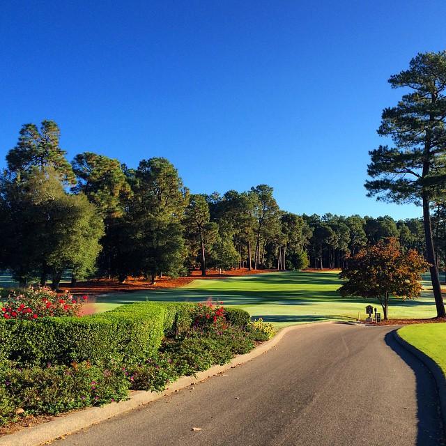 Quiet Carolina Morning #fmsphotoaday