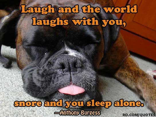 Funny Quotes About Snoring: The Best Sleep Humor Quotes
