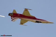 J-3088 - L1088 - Patrouille Swiss - Northrop F-5E Tiger II - Fairford RIAT 2006 - Steven Gray - CRW_0943