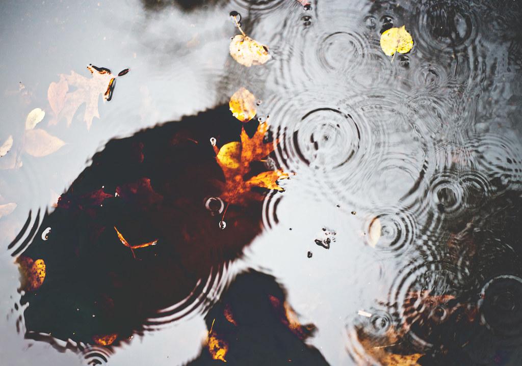114/365 - into the rain