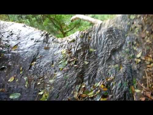 Segunda Cachoeira da Mata