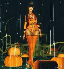 Look # 80 pumpkin