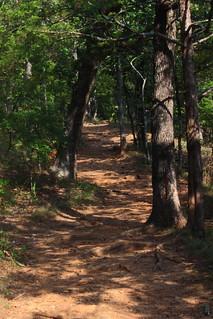 Yellow Rock Trail - Devils Den State PArk, Northwest Arkansas