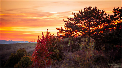 [Criss.AC] Autumn sunset