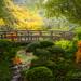 Zen Garden Bridge by Gary Randall