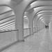 A Walkway of Polished Marble by CVerwaal